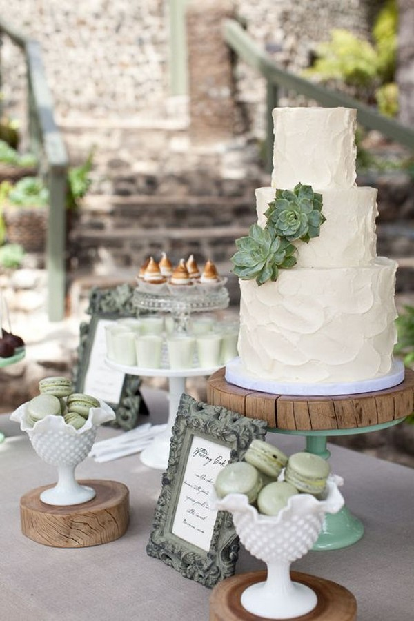 chic rustic white and green wedding cake with succulent