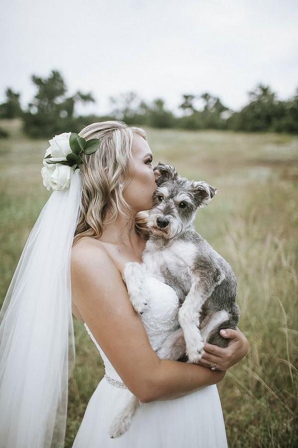 bride and dog wedding photo ideas