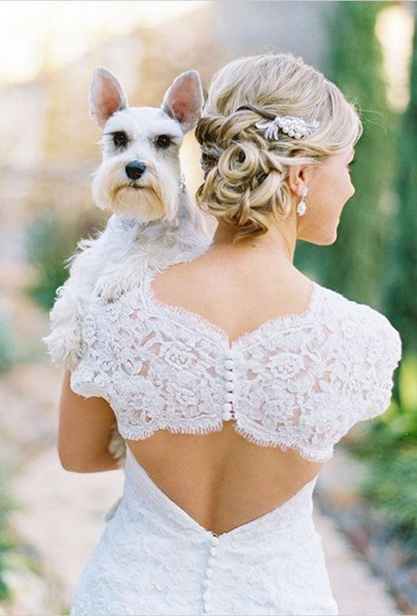 bride and her pet wedding photo