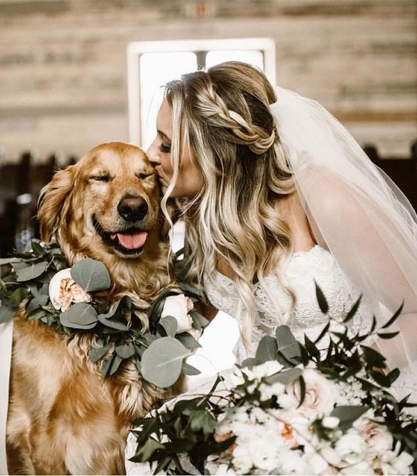 bride and her puppy wedding photo ideas