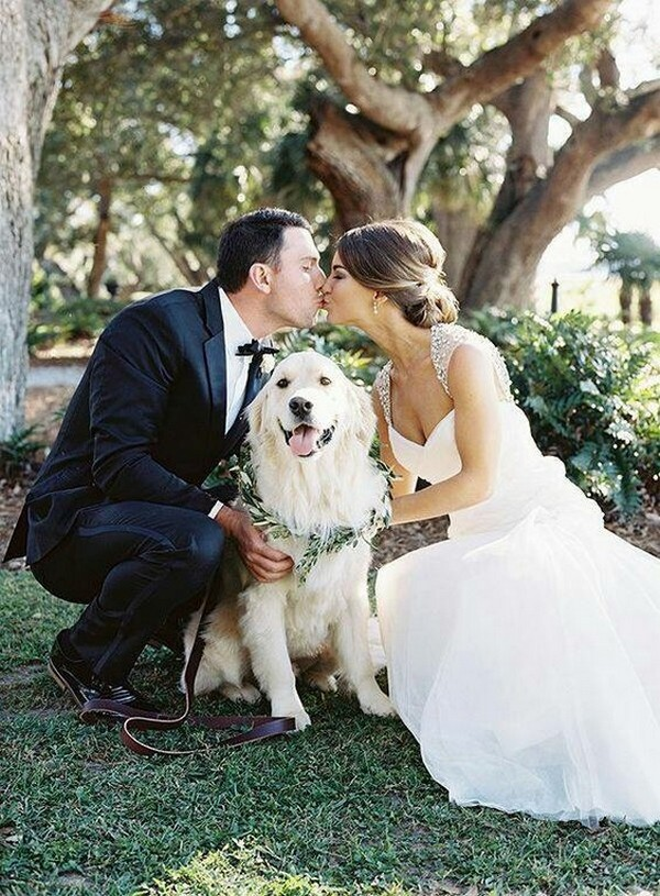 wedding picture with dog