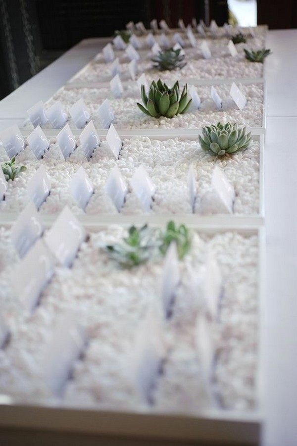 wedding place table decorations with succulant