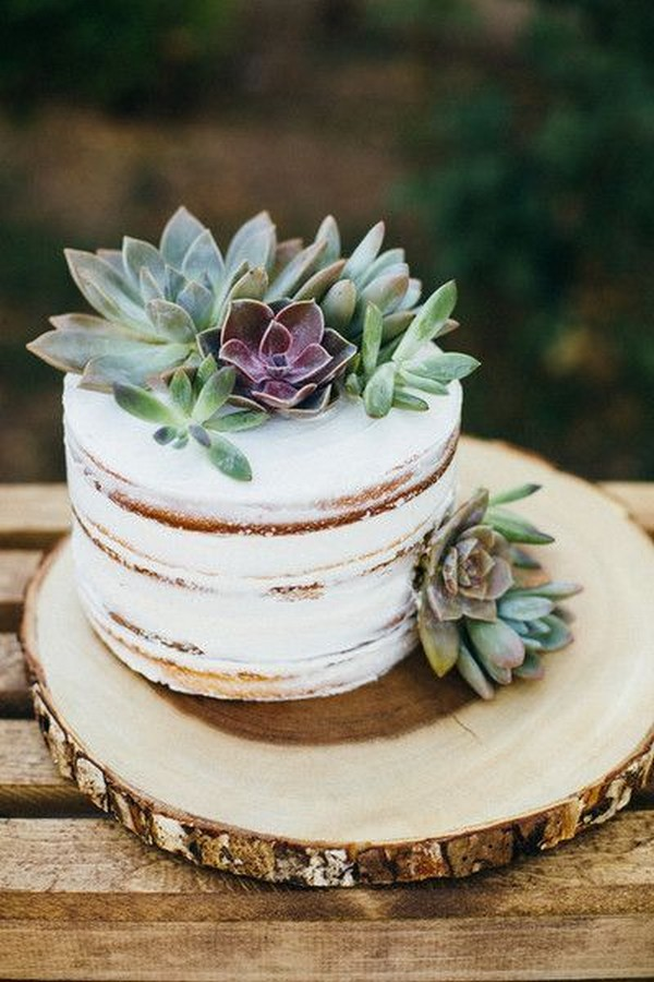 boho chic wedding cake with succulents(1)