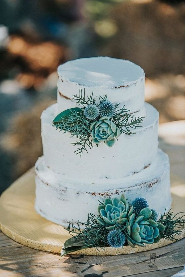 simple rustic wedding cake with succulents