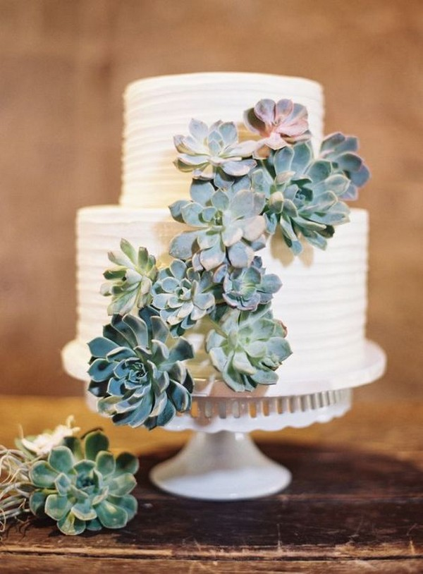 two tier white wedding cake with succulents