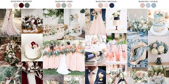 blush pink wedding colors