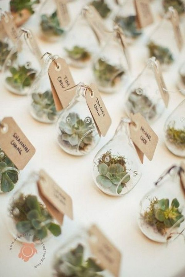 succulents wedding favor ideas