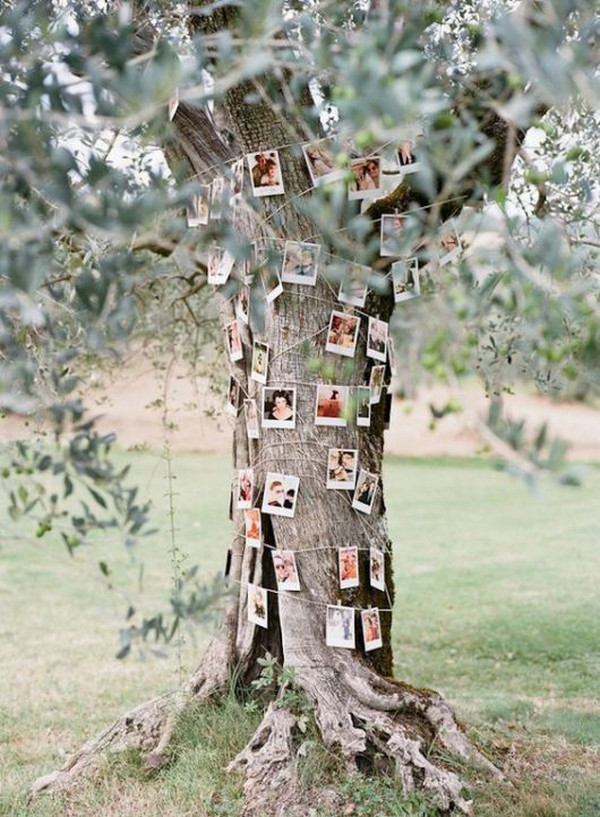 country wedding photo display ideas