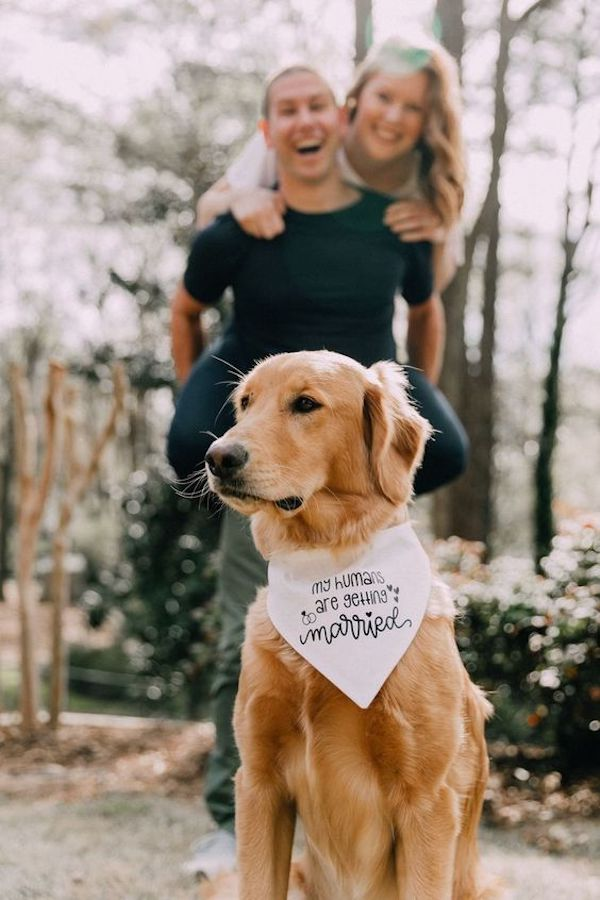 engagement photo ideas with your loved dog